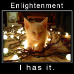 The Path To Enlightenment, raising your vibration, begins with training your attention