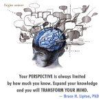 From the limited perspective of the human mind...